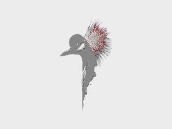 Tessuto Twill in Puro Cotone Bianco Naturale Ecrù